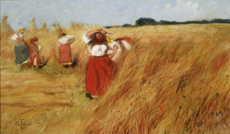 harvest-in-poland-17